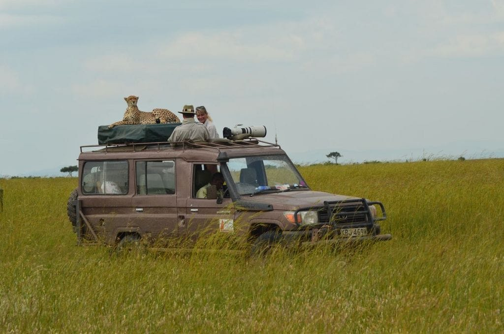 Dispatch From Kenya: Mara Plains Camp, Masai Mara