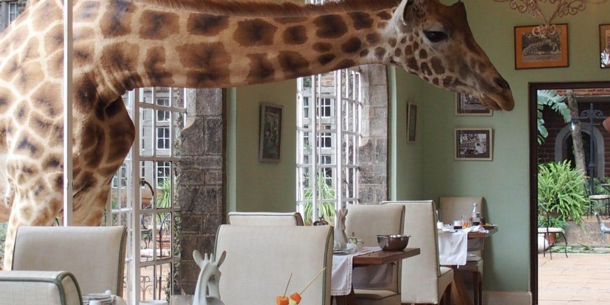 Giraffe-Manor-Nairobi