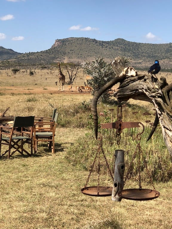 Just Checked Out: Enasoit Camp, Kenya